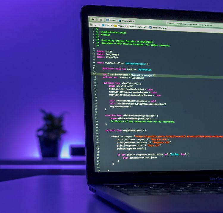 Desarrollo web - desarrollo web - Lima - Perú